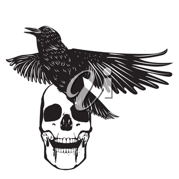 Black and white human skull with crow grunge illustration.